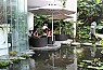 Dịch vụ thiết kế và thi công cảnh quan sân vườn cho nhà vườn, biệt thự, liền kề, VIP resort 5*, càfe shop